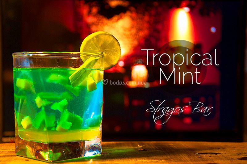 Stragos Tropical Mint