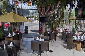 Tendencias Steakhouse & Bar