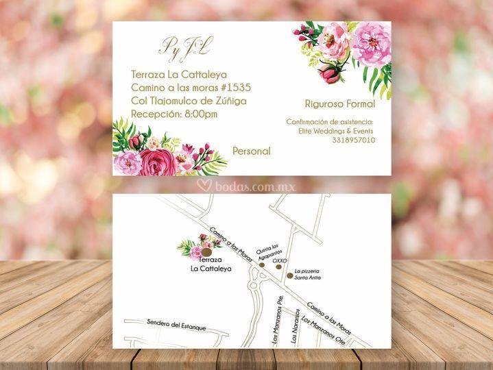 Boleto y mapa flores rosa