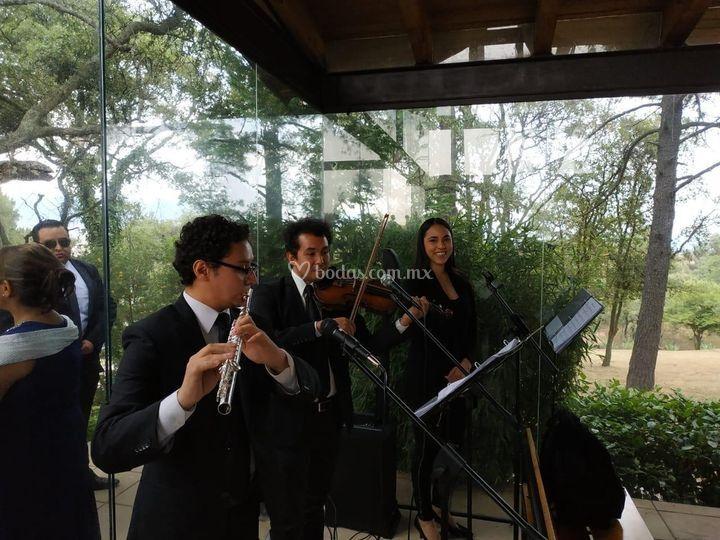 Trío -Soprano,Violín y Flauta.