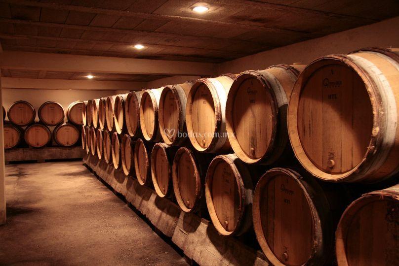 Barricas para madurar vino