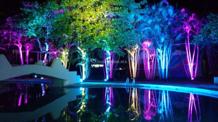 Iluminación ambiental jardín
