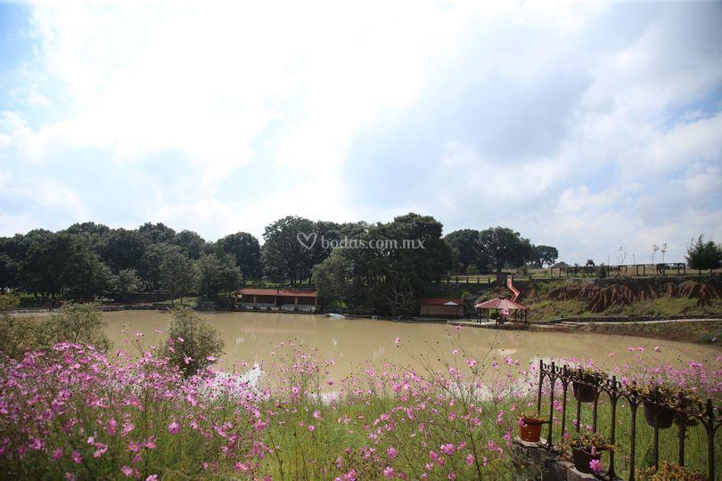 Hacienda la Ilusión