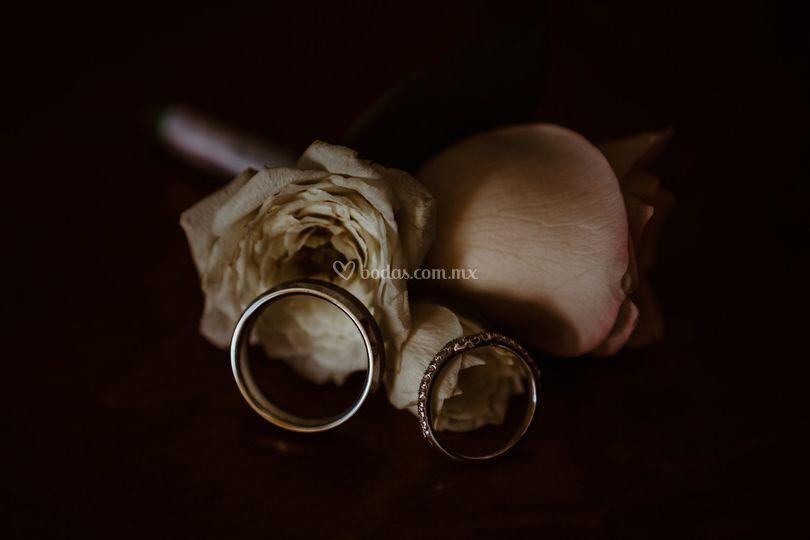 Nuestros anillos.