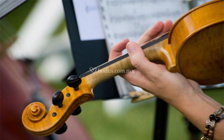 Música para banquetes