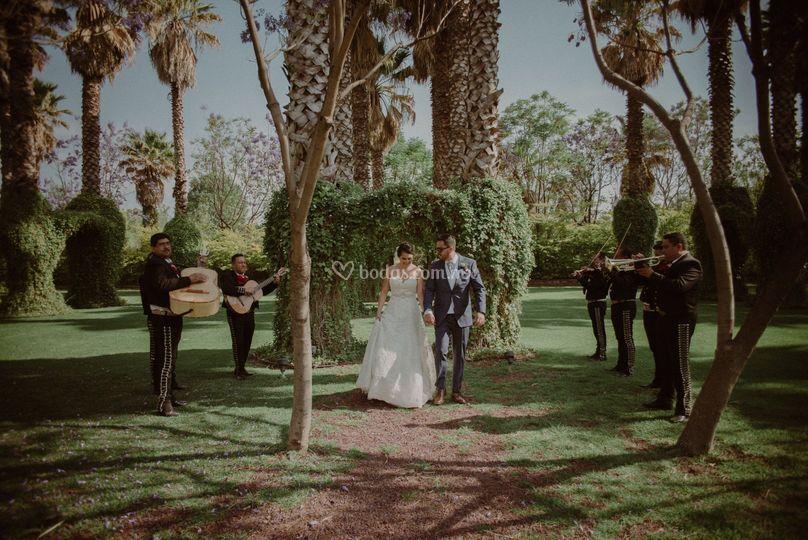 Jardín para bodas en Cortazar