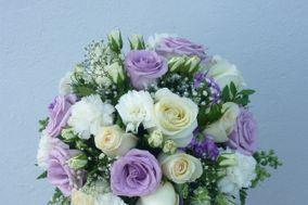 Floral Royal Flor