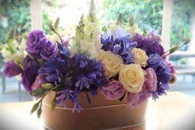 Auma Diseño Floral