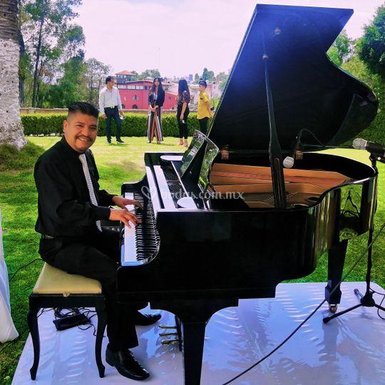 Pianista Boda Petite
