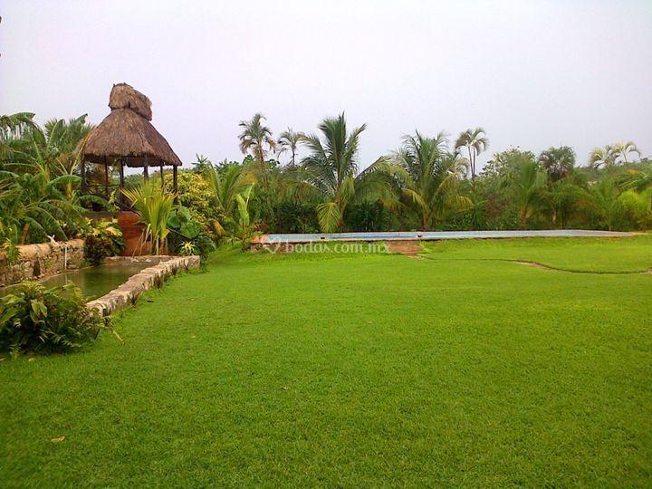 Jardín y más jardín