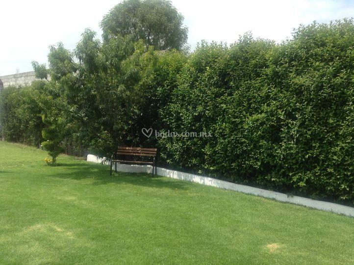 Jardin de villa margarita foto 9 for Jardin villa ale aguascalientes