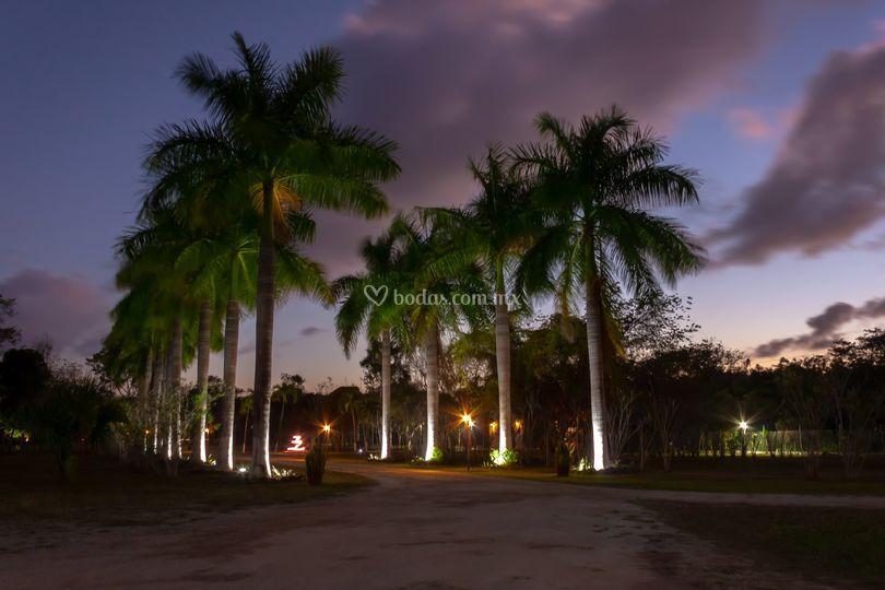 Mayan Secret Hotel