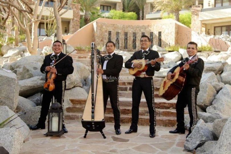 Soy mexico cuarteto de Grupo Musical Soy México