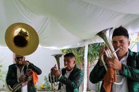 Banda TNT