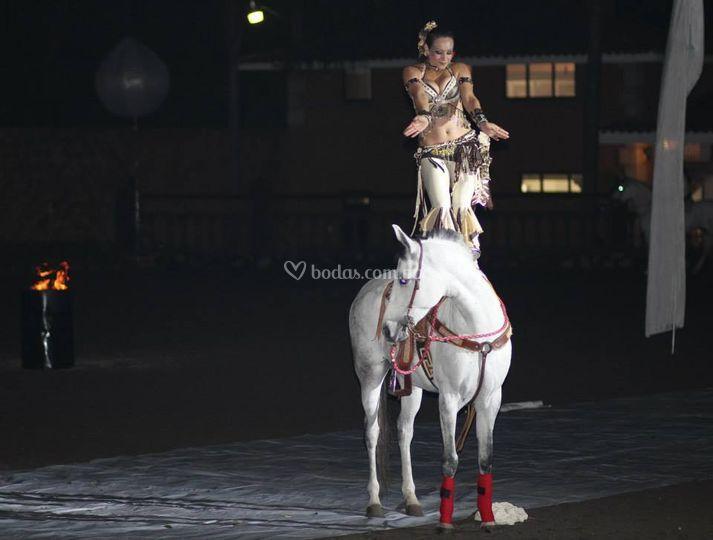 Danza tribal en caballo