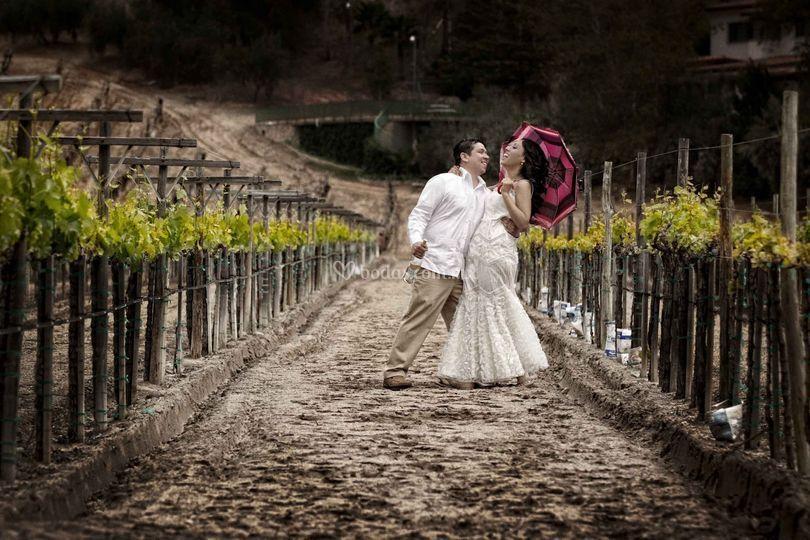 Amor loco y uvas