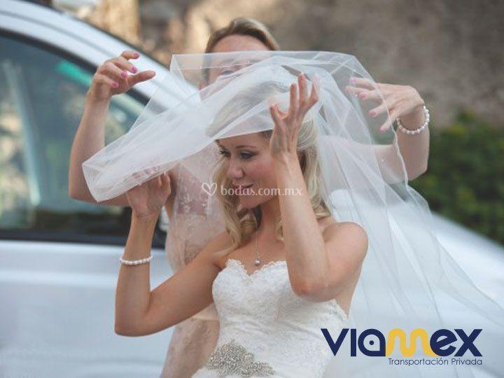 Transportación para novias