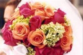 Cozzy Flowers