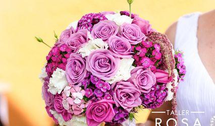 Taller Rosa