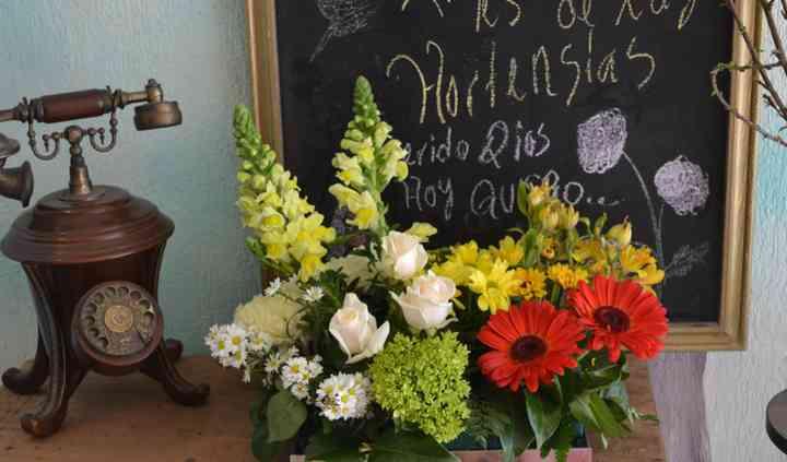 Noil Diseño Floral