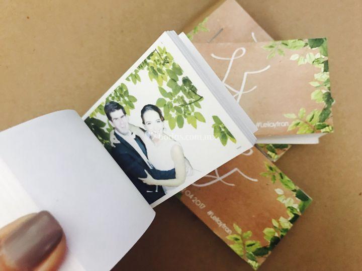 Minibook Libros Animados