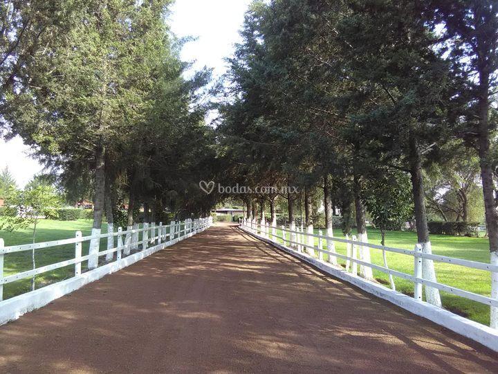 Rancho La Enramada