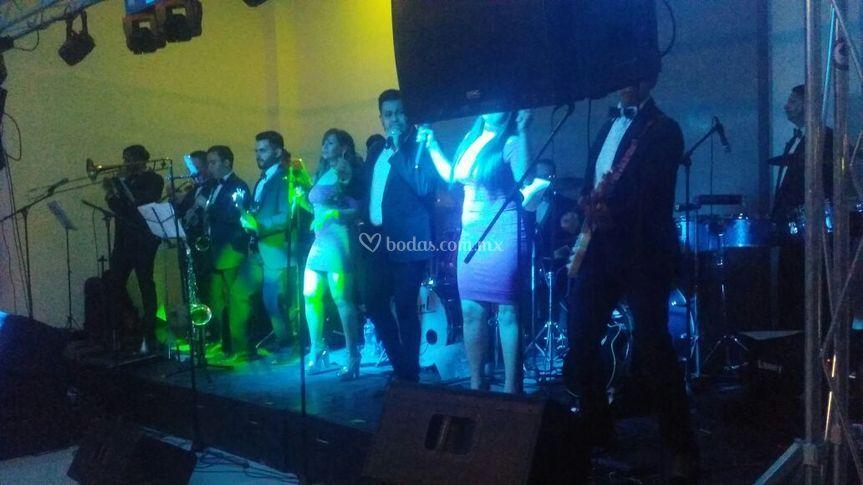 Festivo show la orquesta