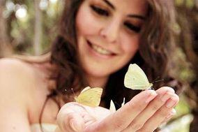 Butterflies - Liberación de Mariposas