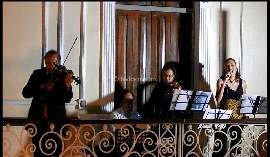 Cantante, pianista y violines