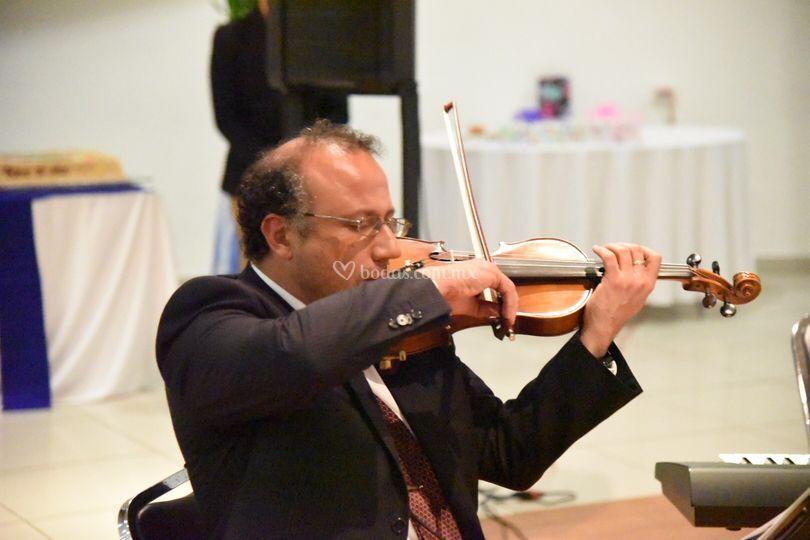 Violinista en boda