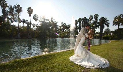 TV Cine Weddings Films