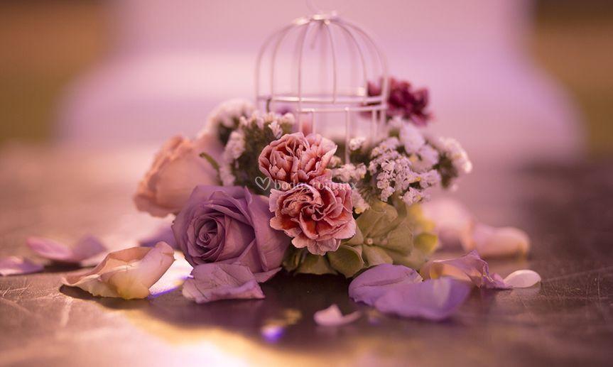 perfiles ucranio experiencia de novia
