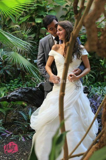 Daniel y Rebeca (post)