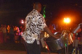 Bryan Parris Steeldrums