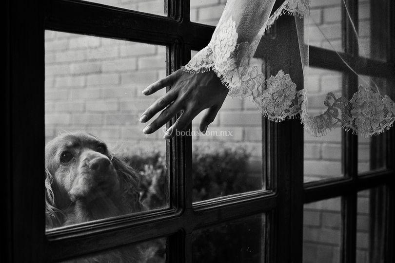 Fotos para bodas de María Velarde Photographer