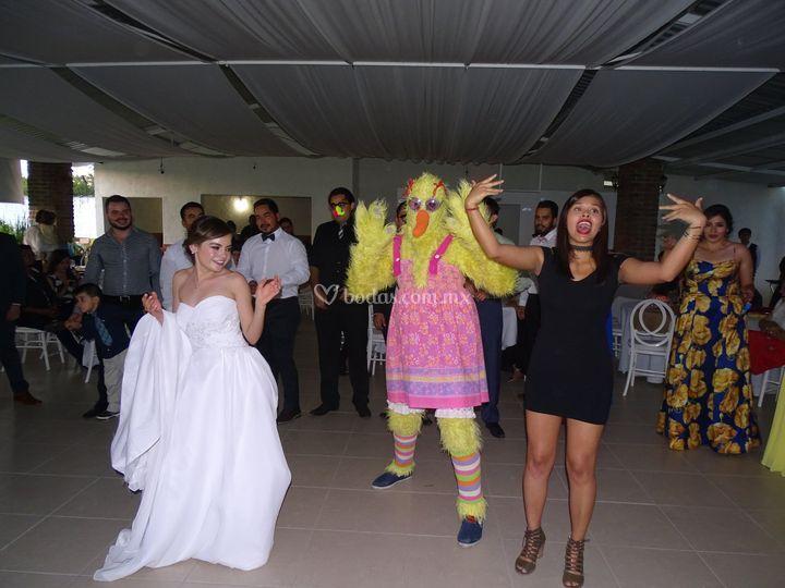 Grupo para bodas