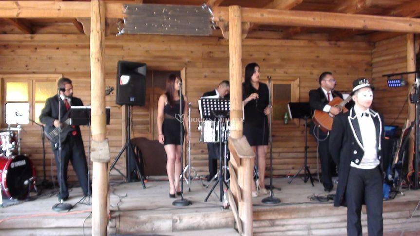 Grupo musical calidad