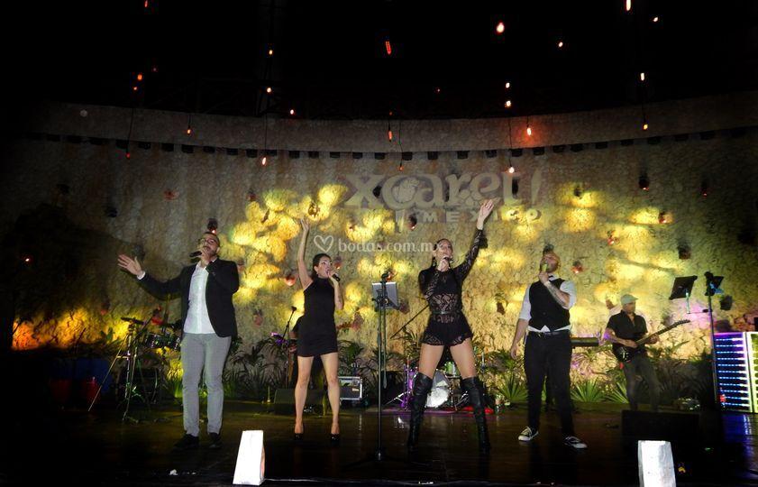 Safari Feast On Stage