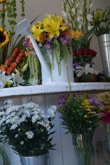 Flores cancún