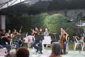 Scherzando - Quinteto de cuerdas