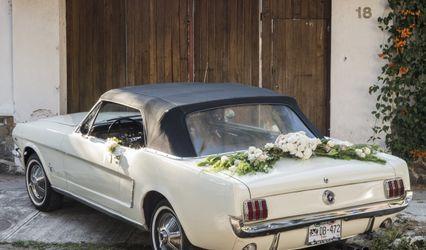 Auto Classic Dreams