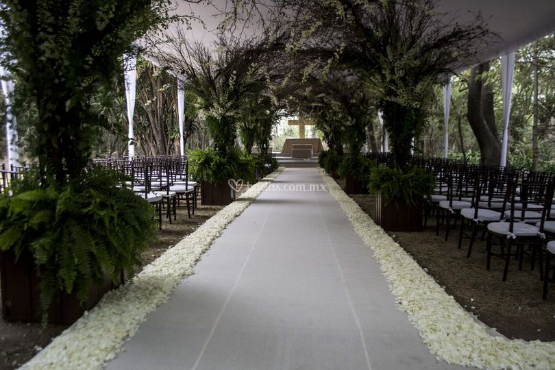 Carpa altar boda
