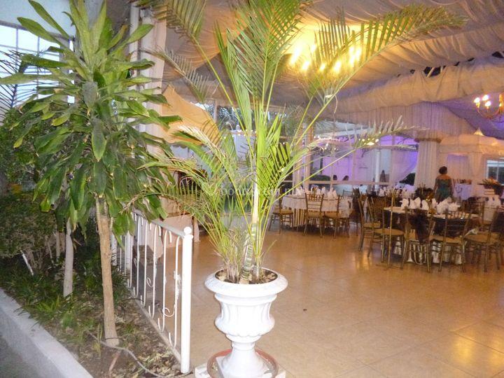 Salón y jardín