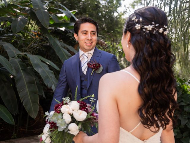 La boda de Aldo y Elena en Xochitepec, Morelos 34