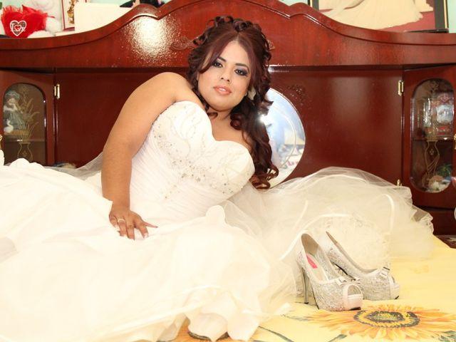 La boda de Robert y Elsa en Ocotlán, Jalisco 3