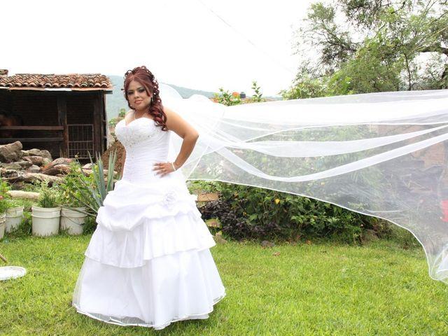 La boda de Robert y Elsa en Ocotlán, Jalisco 10