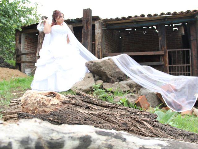 La boda de Robert y Elsa en Ocotlán, Jalisco 13