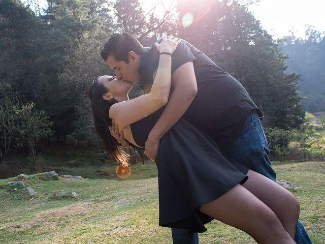 La boda de Rodrigo y Alexis en Tlalnepantla, Estado México 7