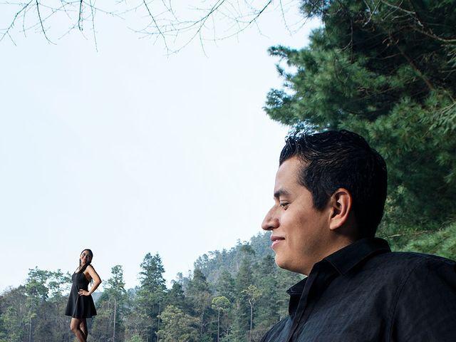 La boda de Rodrigo y Alexis en Tlalnepantla, Estado México 8