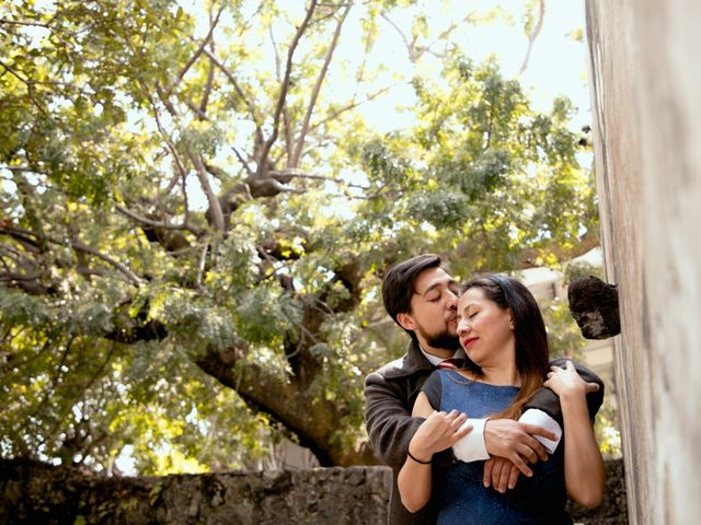 La boda de Esmeralda y Daniel en Mazatepec, Morelos 19